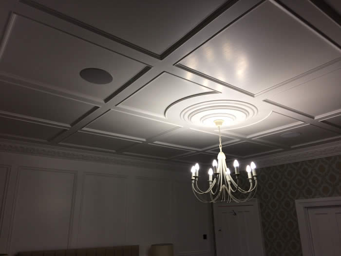 ceiling paneling